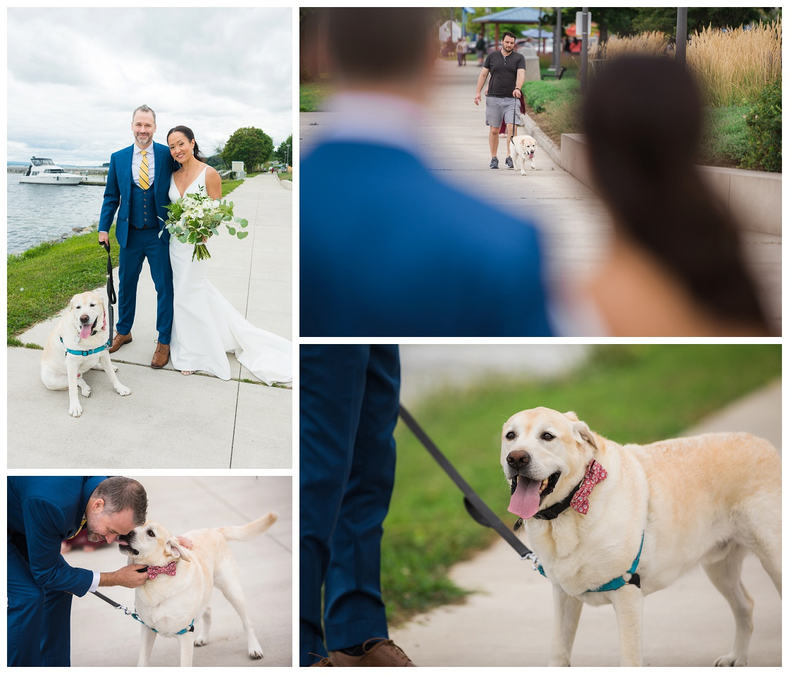 Wedding-day family-dog
